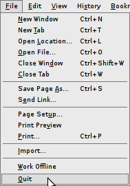 Firefox keyconfig prefs menu