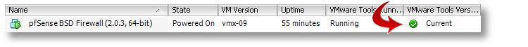 VMware ESXi pfSense tools installed